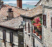 Splash of Color-Cortona, Italy by Deborah Downes