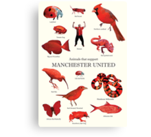 Animals that support Manchester United  Canvas Print