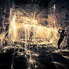Shield Yourself  by AlexAMPhoto