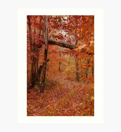 Once Upon a Trail Art Print