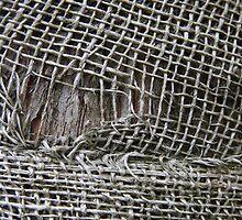 Fabric by Paul Boyle