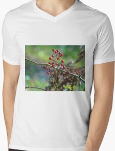 Nature's Christmas colors Mens V-Neck T-Shirt