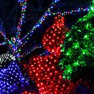 Sparkly Christmas by Sharon Kavanagh