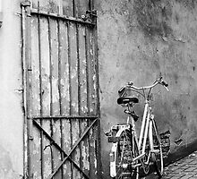 Fence, rust, bike by Jip v K