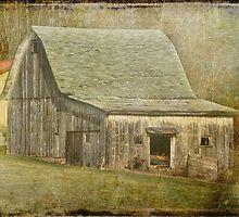 White Barn by vigor