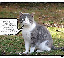 the fat cat sat . . .  by evon ski