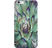 Green And Purple Succulent iPhone Case/Skin