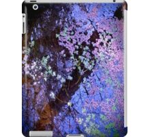 Blue Wetlands iPad Case/Skin