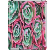 Green And Pink Succulents iPad Case/Skin