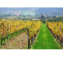 Lamole-Chianti-Toscany  Photographic Print
