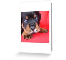 Comical Rottweiler Puppy With Food On Snout Greeting Card