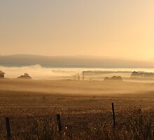 dawn and dusk - Tasmania by gaylene