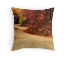 Twisted Path Throw Pillow
