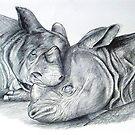 Resting Rhinos by SerendipityArt