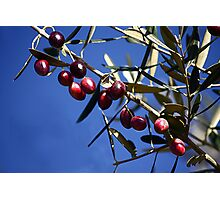 Black olives Photographic Print