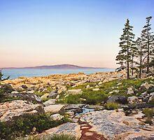 Sunrise Landscape In Maine by Sarah Van Geest