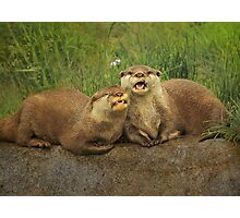 """Mr & Mrs Otter"" Photographic Print"