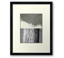 Contrasts Framed Print