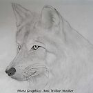 Wolf by Ami  Wilber-Mosher