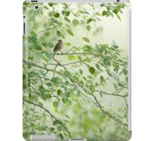 Pinzón | Finch iPad Case/Skin