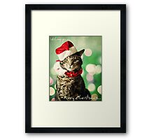 Purry Christmas Framed Print