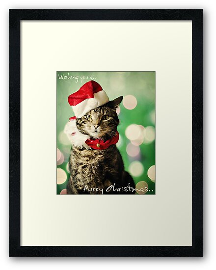 Purry Christmas by Michelle McMahon
