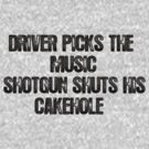 Driver Picks The Music (Dark) by Mollie Taylor