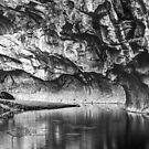 Silver Stream by Marty Straub