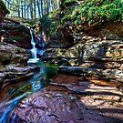 Adams Falls by Marty Straub
