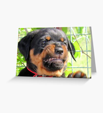 Funny Grumpy Faced Rottweiler Puppy  Greeting Card