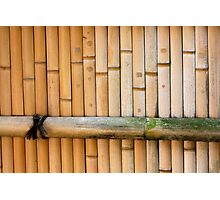 bamboo notes Photographic Print
