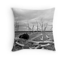 Gloomy Waters Throw Pillow