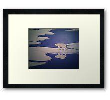 Keep Distance to the Polar King Framed Print