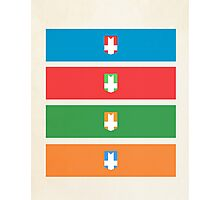 Castle Crashers Photographic Print
