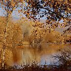 Far Side of the Pond by Vicki Pelham