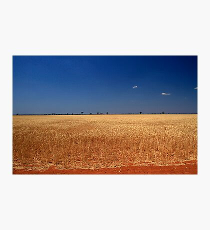 Red Dirt And Golden Grain #3 Photographic Print