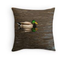 Mallard Drake Throw Pillow