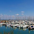 Piriac-sur-Mer, France #3 by Elaine Teague