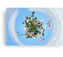 Poppy Orb Canvas Print