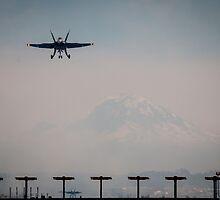 Landing by Sue Morgan
