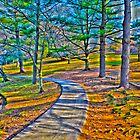 colorful path by Cranemann