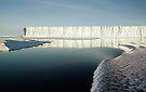 Bright Day Iceberg, Ross Sea, Antarctica  by Carole-Anne