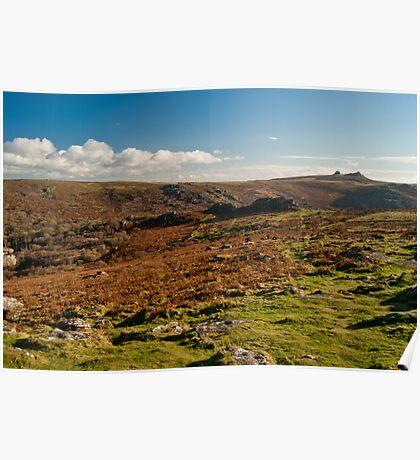 Dartmoor Landscape Poster