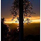 Sunset Over Grasse (2) by stephane j. allier