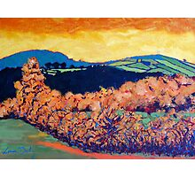 Tara Hill, Wexford Photographic Print