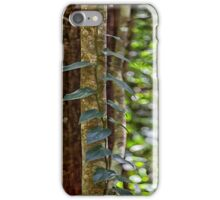 Beautiful rainforest vines iPhone Case/Skin