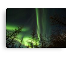 Yukon Northern Lights 1 Canvas Print