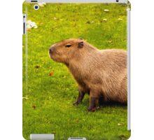 Capybara iPad Case/Skin