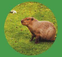 Capybara Kids Clothes