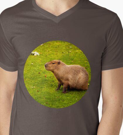 Capybara Mens V-Neck T-Shirt